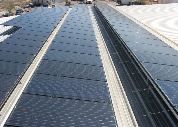 Wilding Wallbed's Solar Panels