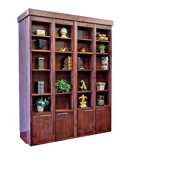Bi-fold Bookcase Wallbed with Lower Doors