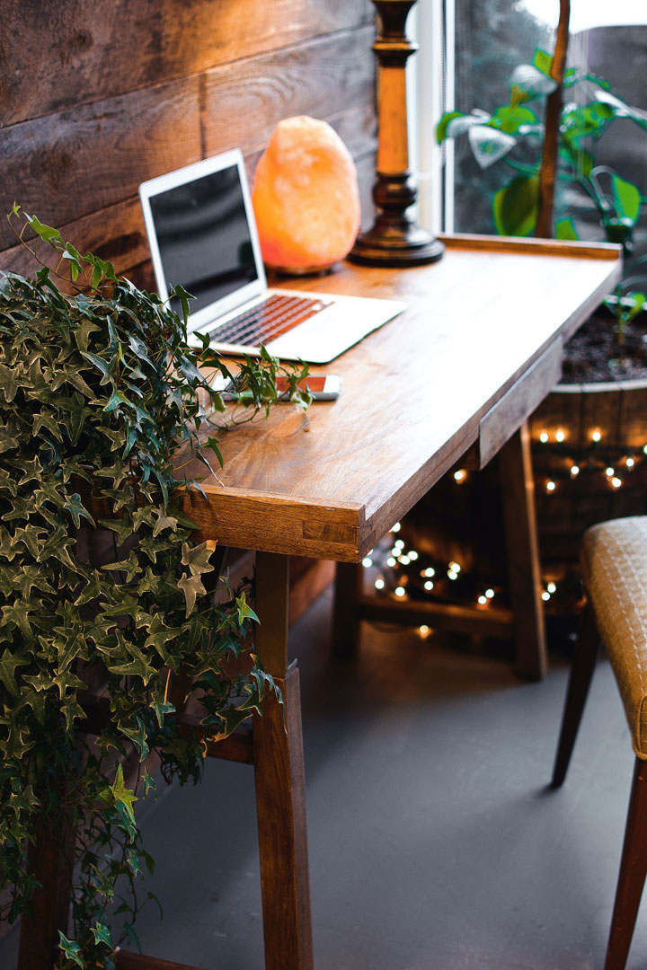 decorate your office with plants